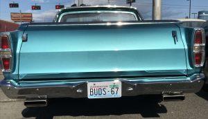 Buds 67